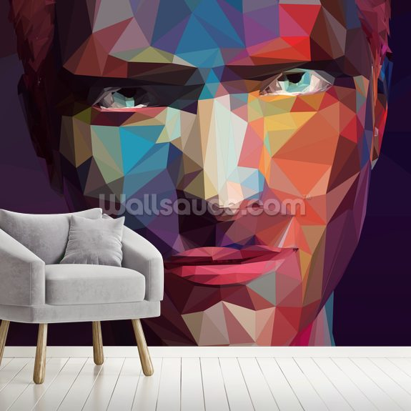Pop Art Portrait Abstract wall mural room setting