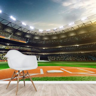 Baseball Stardom Wallpaper Wall Murals