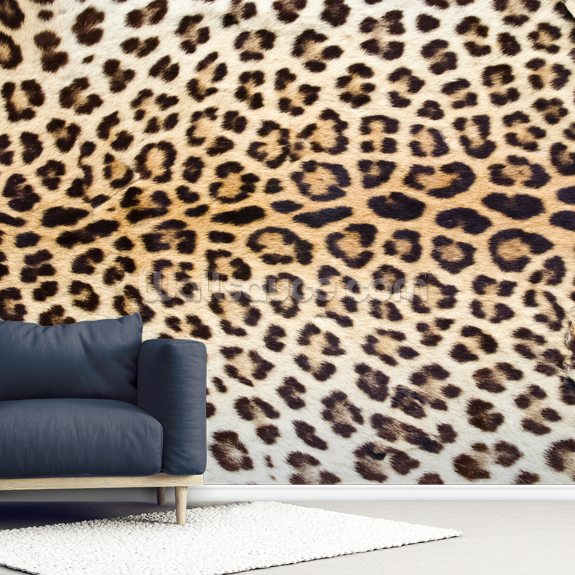 Jaguar Print wallpaper mural room setting