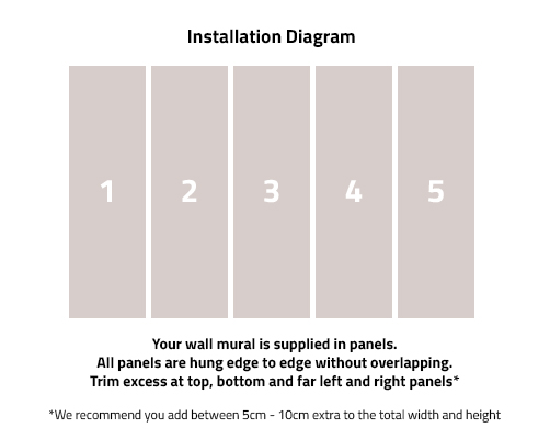 Wall Mural Installation Diagram