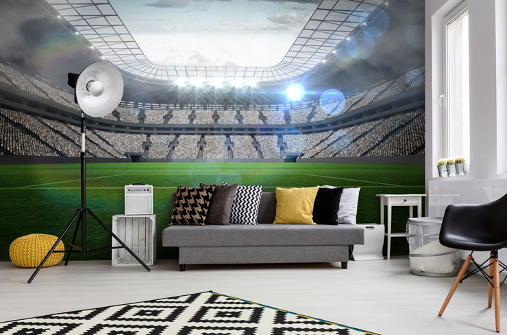 football stadium trendy man cave