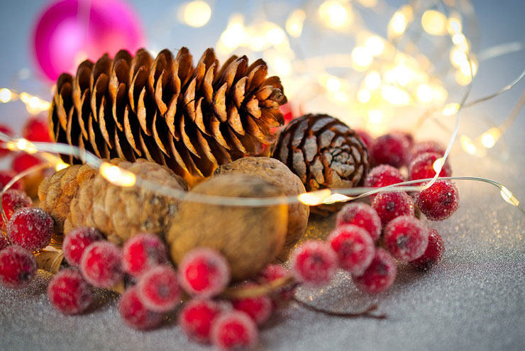 pine cone and red berries close up