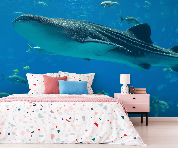 under the sea whale shark in modern guest bedroom