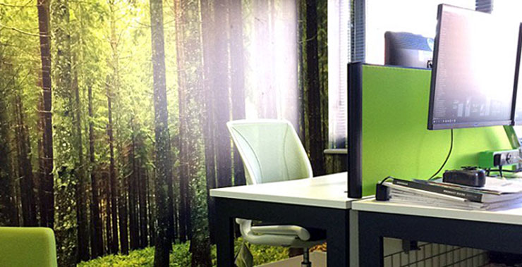 green forest wallpaper in relaxing office