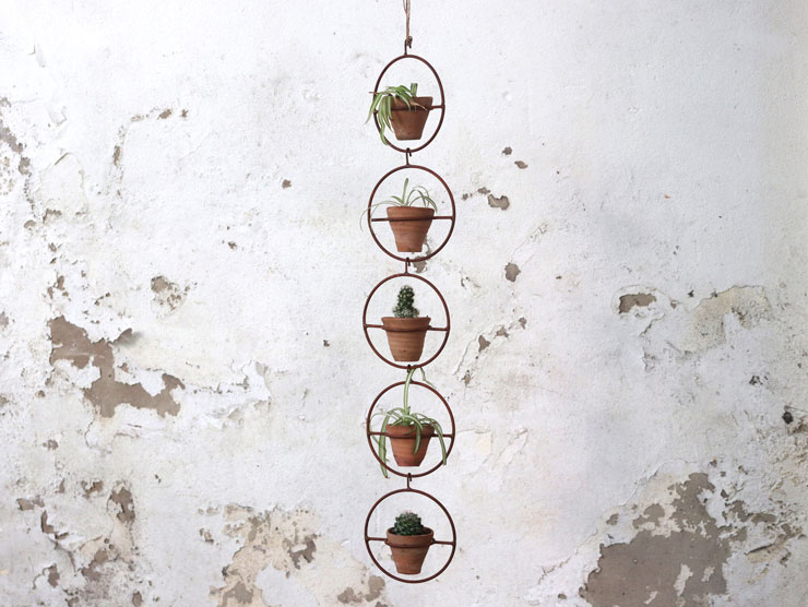 large brass circular chain containing potted plants