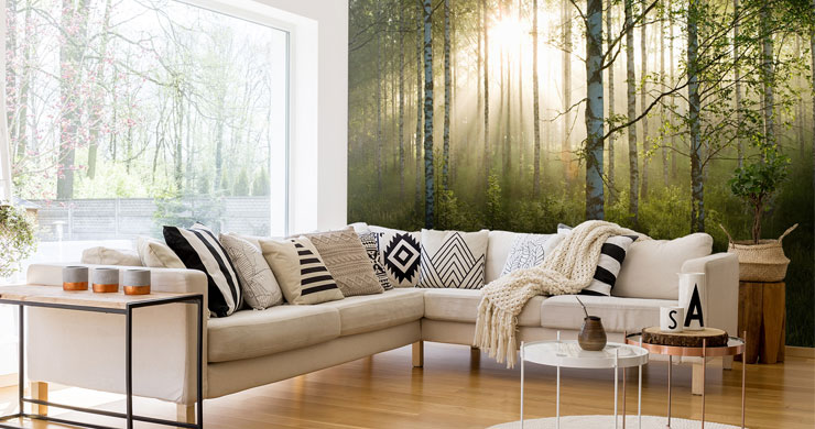 sunny birch tree woodland wall mural in lounge with l-shaped sofa