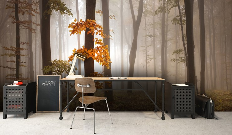 misty morning in autumn forest wallpaper in minimalist office