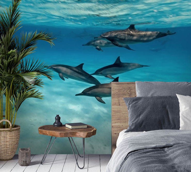dolphin family photo ocean wallpaper in rustic feel bedroom