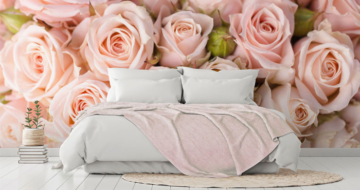 powder pink roses photo wallpaper in calm bedroom