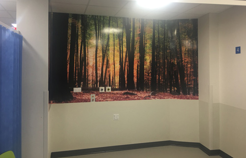 Hospital Forest Wall Mural