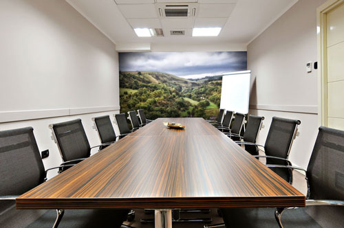 Beautiful Office Wall Murals