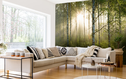 Image Source Wallpaper Murals