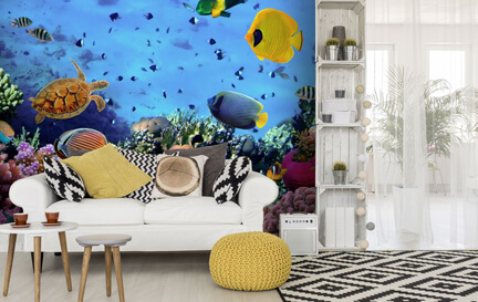 Sea Life & Fish Wallpaper Wallpaper Murals