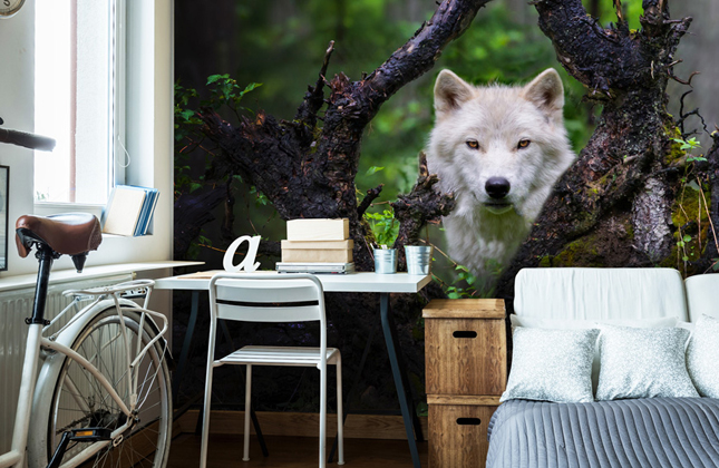 Animal Wallpaper Wallpaper Murals