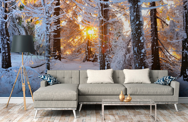 Winter & Christmas Wallpaper Wallpaper Murals