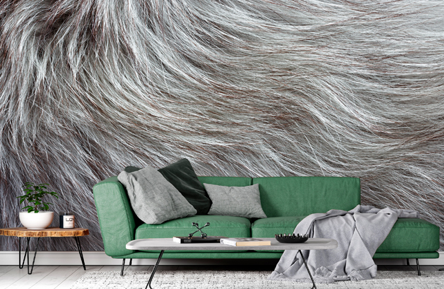 Grey Wallpaper Wallpaper Murals