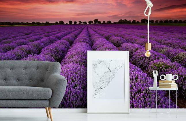 Landscape Wallpaper Wall Murals Wallsauce Us