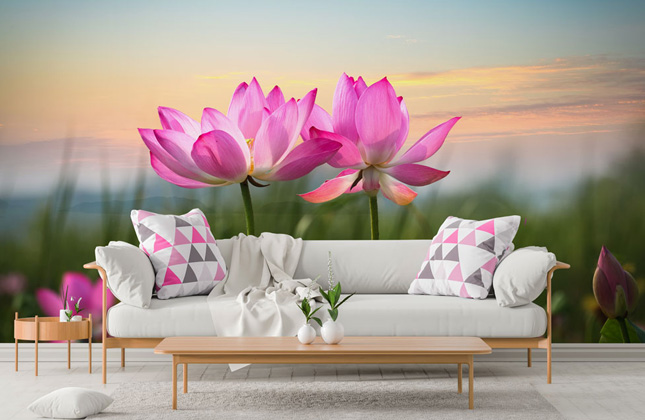 Lotus Wallpaper Wallpaper Murals