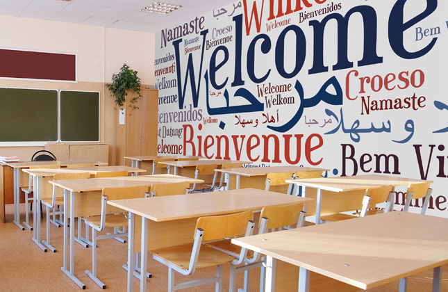 Modern Foreign Languages Wallpaper Murals