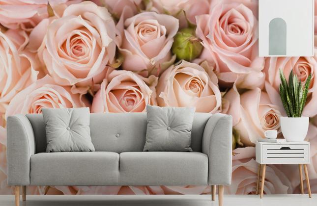 Rose Wallpaper Wall Murals Wallsauce Us