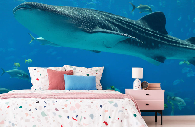 Shark Wallpaper Wallpaper Murals