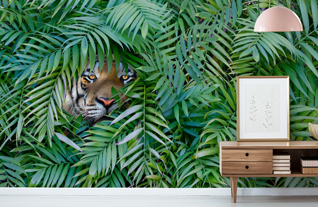 Tiger Wallpaper Wallpaper Murals