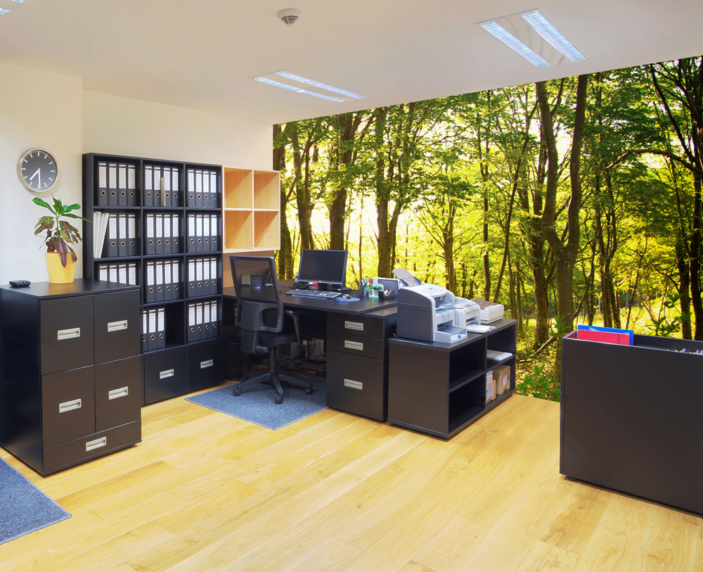 woodland mural in office design idea