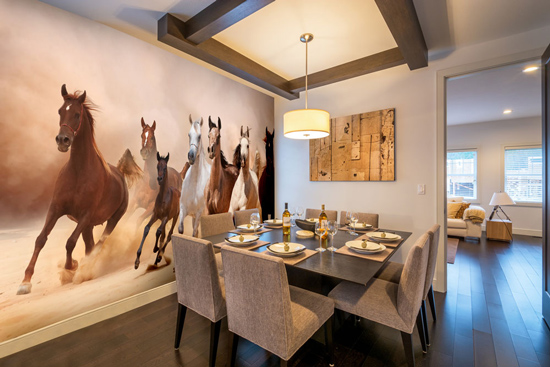 Equestrian Photo Wallpaper