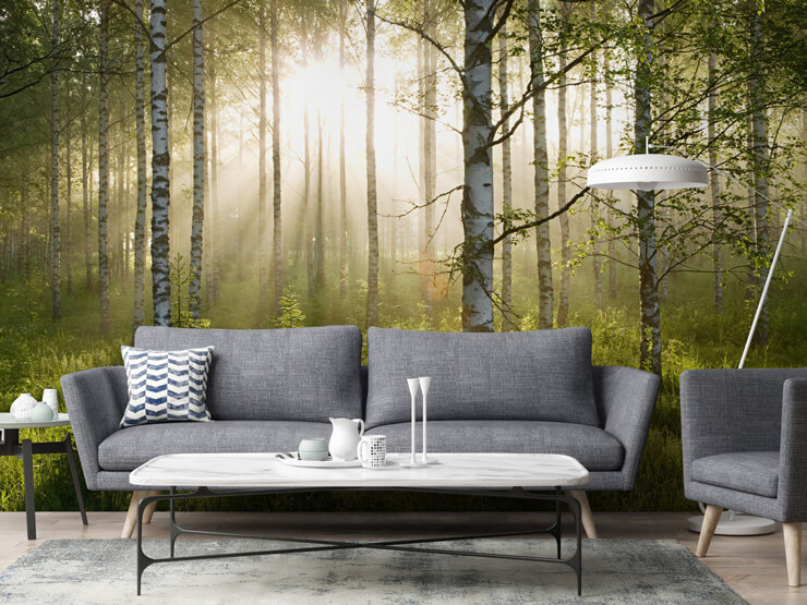 Birch-tree-contemporary-wallpaper-in-living-room