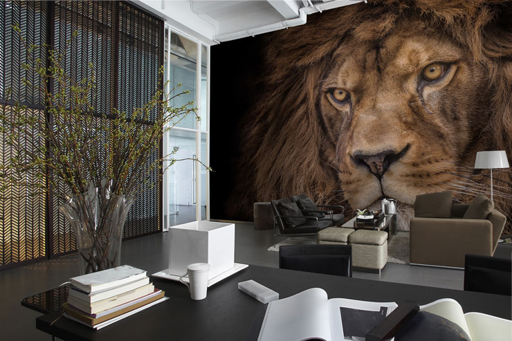 Lion-wallpaper-in-waiting-room