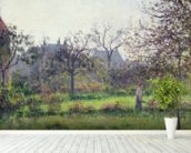 Morning Sun, Autumn, Eragny, 1897 (oil on canvas) wallpaper mural in-room view
