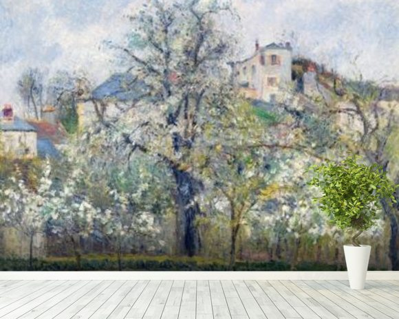 The Vegetable Garden with Trees in Blossom, Spring, Pontoise, 1877 (oil on canvas) wall mural room setting