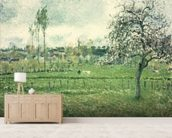 Meadow at Eragny, 1885 mural wallpaper living room preview
