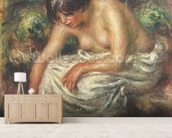 The toilet after the bath, 1915 wall mural living room preview