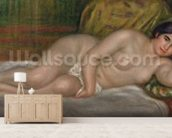 Reclining female nude (Gabrielle) 1906-07 (oil on canvas) wall mural living room preview