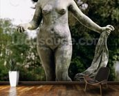 Venus Victrix (bronze) wall mural kitchen preview