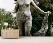 Venus Victrix (bronze) wall mural living room preview
