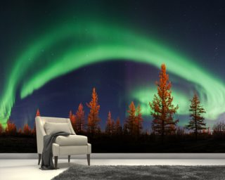 Northern Lights Bow wall mural