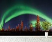 Northern Lights Bow wall mural in-room view