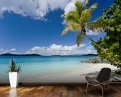 U.S. Virgin Islands, St. John, Palm Tree Beautiful Beach wallpaper mural kitchen preview