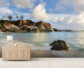 British Virgin Islands, Virgin Gorda, Tropical Beach Seascape mural wallpaper living room preview