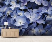 Hawaii, Maui, Hydrangea Flowers wall mural living room preview