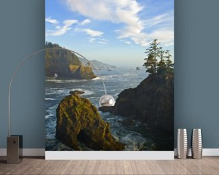 Pacific Ocean from the Coast wallpaper mural