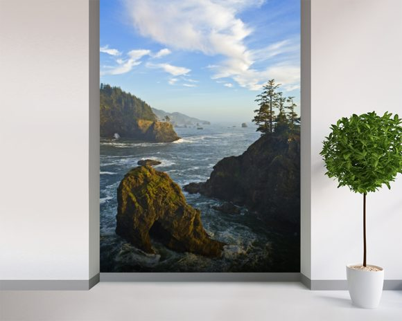 Pacific Ocean from the Coast wallpaper mural room setting