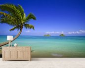 Hawaii, Oahu, Lanikai, Palm Tree Over Blue Ocean wall mural living room preview
