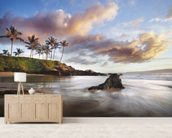 Maui Makena Beach wall mural living room preview