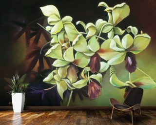 Orchid Group - Cluster Of Green Orchids On Stem Wallpaper Mural Wall Murals Wallpaper