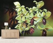 Orchid Group - Cluster Of Green Orchids On Stem wallpaper mural living room preview