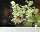 Orchid Group - Cluster Of Green Orchids On Stem wallpaper mural in-room view
