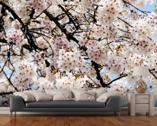 Wall Paper Mural floral wallpaper & flower wall murals | wallsauce usa
